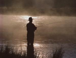 Цікаві факти про органи зору і слуху у риб, і фактори що впливають на клювання