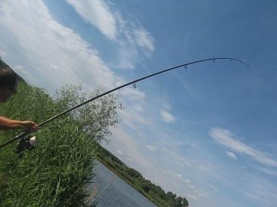 Новачкам про виважування риби