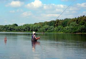 Болонська вудочка і ловля риби на неї (відео від Братів Щербакових)
