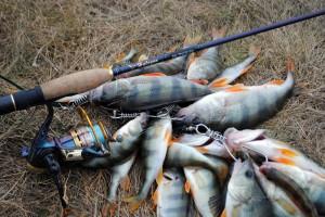 Кілька секретів успішної риболовлі